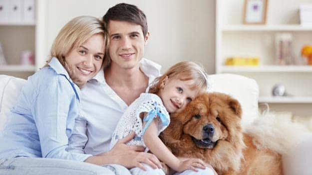 Wills & Trusts dog-young-family Direct Wills Hale End
